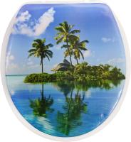 Сиденье для унитаза АкваЛиния SK-06015 (остров) -