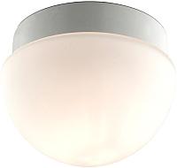 Светильник Odeon Light Minkar 2443/1B -
