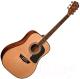 Акустическая гитара Washburn AD5 -