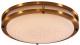 Потолочный светильник Citilux Бостон CL709253 -