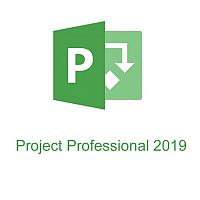 ПО для управления проектами Microsoft Project Professional 2019 Windows (H30-05756) -
