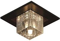 Точечный светильник Lussole Notte di Luna LSF-1307-01 -