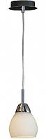 Потолочный светильник Lussole Apiro LSF-2406-01 -