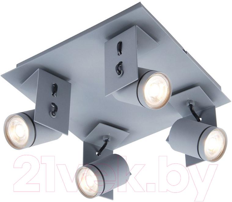 Купить Спот Lussole, Loft LSP-8024, Италия