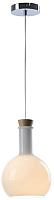 Потолочный светильник Lussole Loft 5 LSP-9637 -