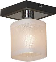 Потолочный светильник Lussole Costanzo LSL-9007-01 -