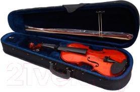 Скрипка Aileen