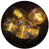 Светодиодная гирлянда ETP FS-5LED (2.5м, теплый белый) -