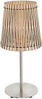 Прикроватная лампа Eglo Sendero 96196 -