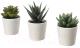 Искусственные растения Ikea Фейка 203.953.45 (3шт) -