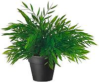 Искусственное растение Ikea Фейка 003.719.58 -