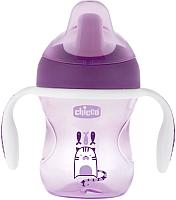Поильник Chicco Training Cup / 340624026 (200мл, розовый/фиолетовый) -