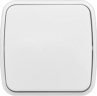 Выключатель EKF Basic Минск ОП 1кл 10А / EGV10-021-10 (белый) -