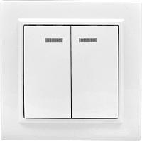 Выключатель EKF Basic Минск СП 2кл 10А с индикатором / ERV10-123-10 (белый) -