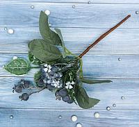 Декор Зимнее волшебство Черника с белыми цветочками / 3555476 -
