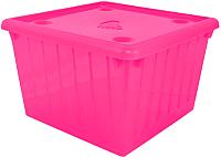Контейнер для хранения Алеана 122043 (темно-розовый) -