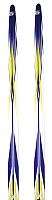 Лыжи беговые Atemi Arrow wax 190 (синий) -