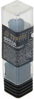 Фреза Tundra 3130112