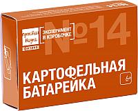 Набор для опытов Простая наука Эксперимент в коробочке. Картофельная батарейка / 0-314 -