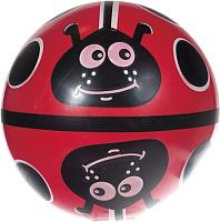 Мяч детский Dema-Stil Божья коровка на поле / DS-PP 009/14 -