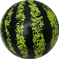 Мяч детский Dema-Stil Арбуз / DS-PV 421/14 -