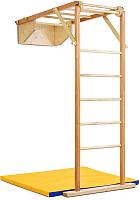 Детский спортивный комплекс Kidwood Жираф / 010219 -