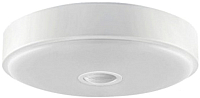 Светильник Yeelight Ceiling Light 260 / YLXD09YL -