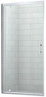 Душевая дверь Roltechnik SaniPro OBDO1/100 (хром/прозрачное стекло) -