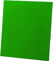 Вентилятор вытяжной AirRoxy dRim 125PS-C167 -