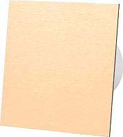 Вентилятор вытяжной AirRoxy dRim 100S-C169 -