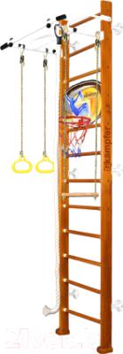 Детский спортивный комплекс Kampfer Helena Wall Basketball Shield (3м, классический/белый турник)