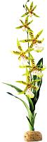 Декорация для аквариума HAGEN Орхидея / PT2991 -