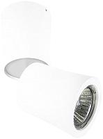 Точечный светильник Lightstar Rotonda 214456 -