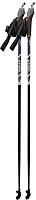 Палки для скандинавской ходьбы Atemi ATP02 (125см) -