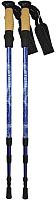 Палки для скандинавской ходьбы Atemi ATP05 (синий) -