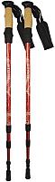 Палки для скандинавской ходьбы Atemi ATP05 (красный) -