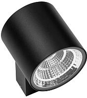 Светильник уличный Lightstar Paro 361672 -