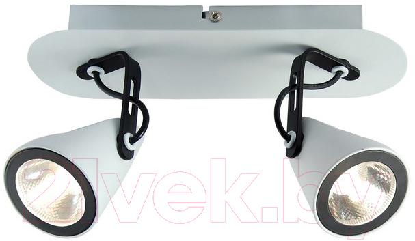 Купить Спот Lussole, Loft LSN-4101-02, Италия