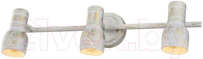 Купить Спот Lussole, LGO LSP-8057, Италия