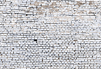 Фотообои Komar White Brick 8-881 (368x254) -