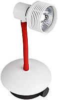 Настольная лампа Lussole Arina LSP-9818 -