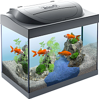 Аквариумный набор Tetra Starter Line LED Goldfish 709807/267527 -