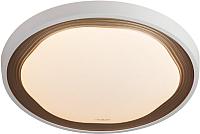 Потолочный светильник Евросвет Range 40006/1 Led (кофе) -