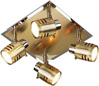 Спот Евросвет Leonardo 23463/4 (хром/античная бронза) -