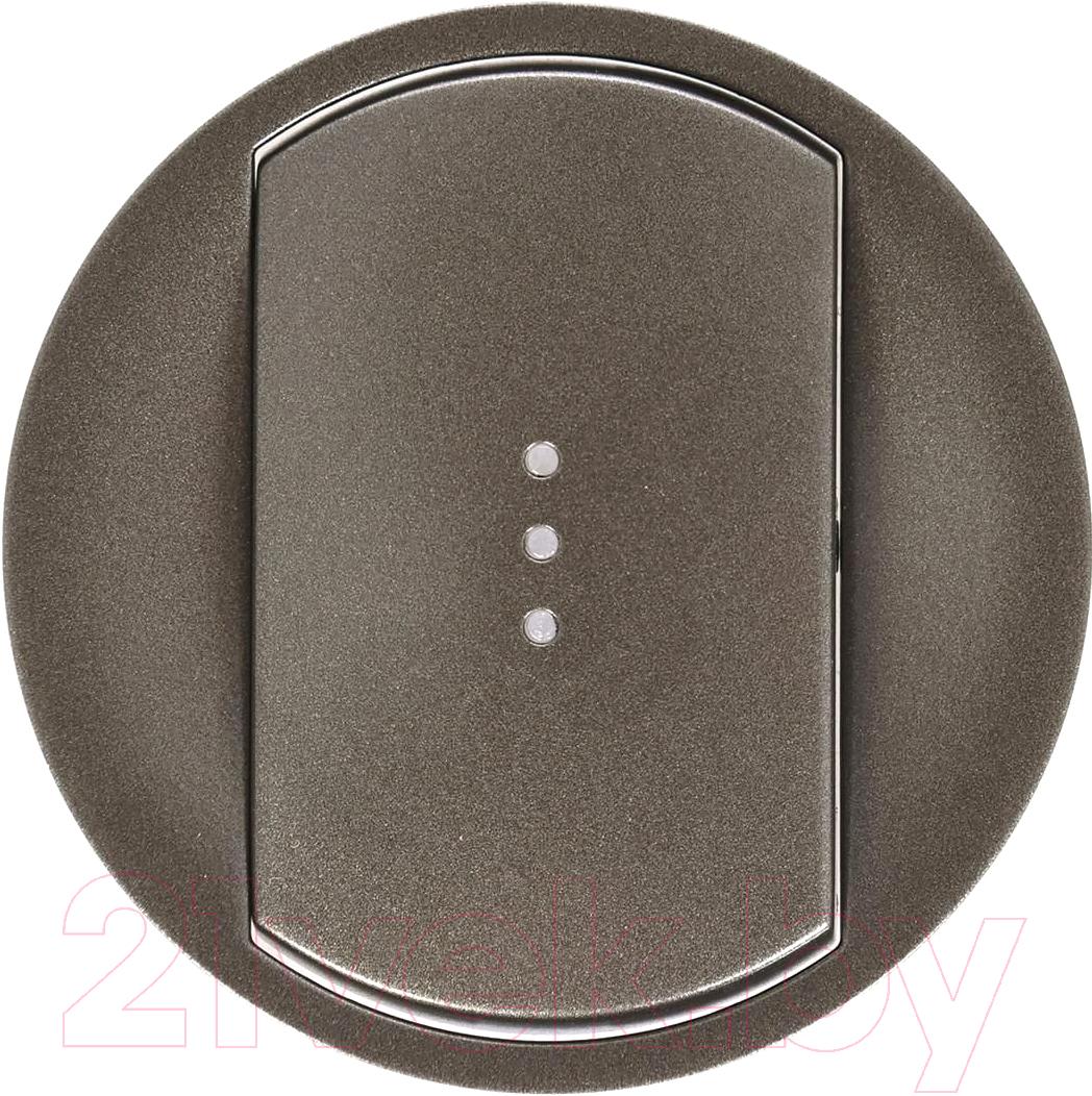 Купить Лицевая панель для выключателя Legrand, Celiane 67903 (графитовый), Франция, пластик, Celiane (Legrand)