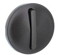 Лицевая панель для выключателя Legrand Celiane 65201 (графит) -