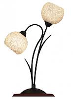 Прикроватная лампа Lussole Bagheria LSF-6294-02 -
