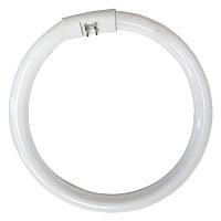 Лампа КС T5 22W 840 G10Q / 950213 -