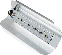 Светильник Glanzen RPD-0001-50 -