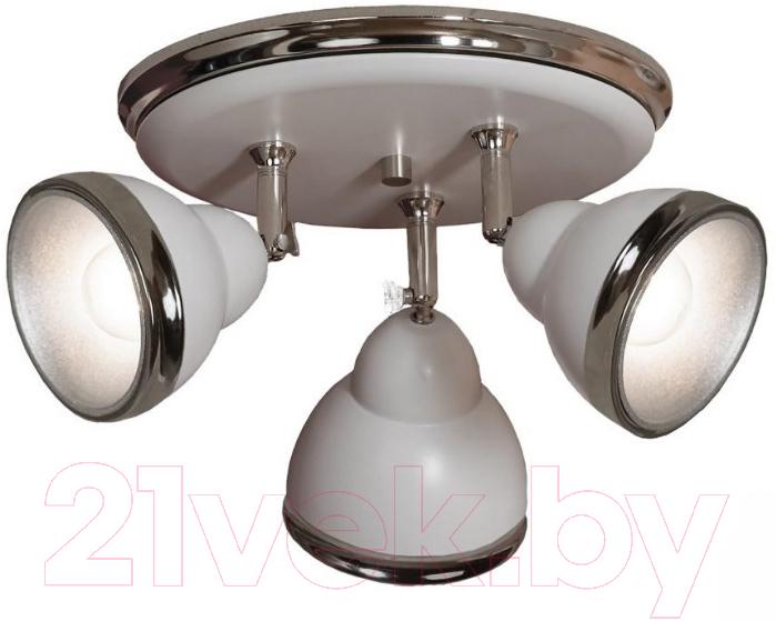 Купить Спот Lussole, LSN-6211-03, Италия